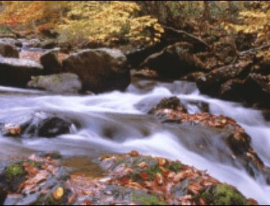 Watershed Assessment Projects