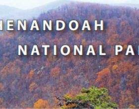 Outreach Publication on Air Quality in Shenandoah National Park