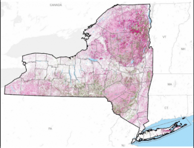 New York State Greenhouse Gas Sources and Sinks Associated with Natural and Working Lands