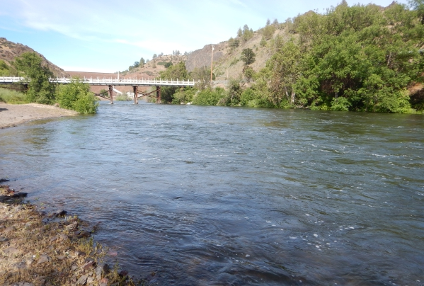 Klamath Water Quality Monitoring 2020